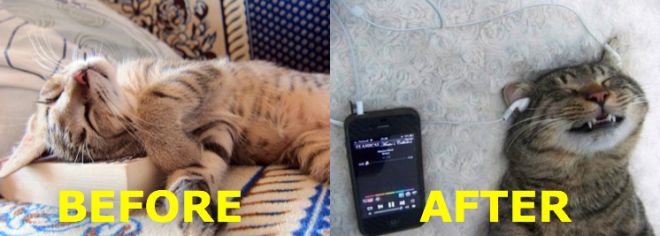 Before + After Audiobooks